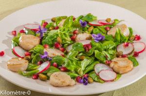 Photo de recette de salade de saint jacques , roquette, radis, violettes, fleurs, facile, rapide de Kilomètre-0, blog de cuisine réalisée à partir de produits locaux et issus de circuits courts