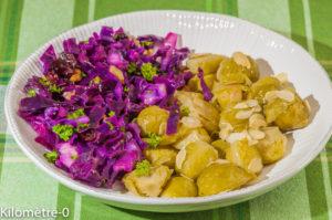 Photo de recette végétarienne, healthy, salade, chou rouge, choux de Bruxelles, amandes, noix, facile, bio , léger de  recette de Kilomètre-0, blog de cuisine réalisée à partir de produits locaux et issus de circuits courts