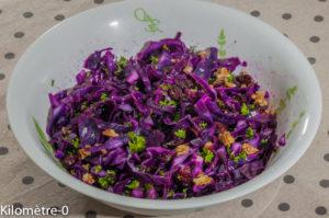 Photo de recette de chou rouge, salade, noix, cranberries de Kilomètre-0, blog de cuisine réalisée à partir de produits locaux et issus de circuits courts