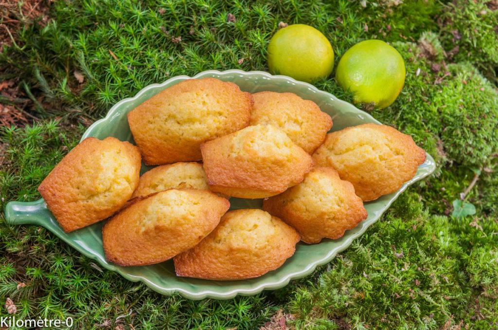 image de recette facile, rapide, économique, légère, bio de Kilomètre-0, madeleines au citron, petit déjeuner, goûter, dessert, biscuits