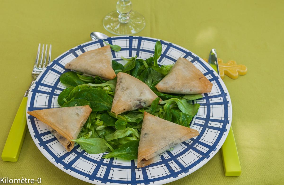 image de recette facile de Kilomètre-0, brick, brik, Samoussa au confit de canard, facile, rapide, apéro,