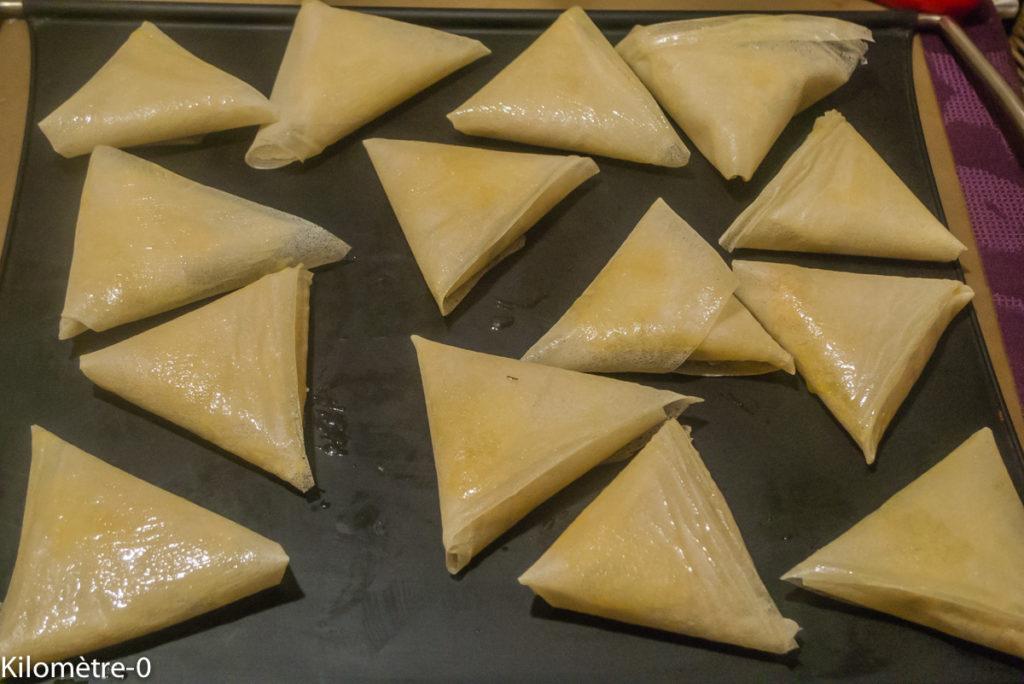 Photo de recette de samossa saumon, facile, rapide, léger  de Kilomètre-0, blog de cuisine réalisée à partir de produits locaux et issus de circuits courts