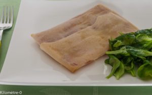 Photo de recette facile, rapide, légère, bio de brik jambon comté de  Kilomètre-0, blog de cuisine réalisée à partir de produits locaux et issus de circuits courts