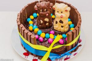 Photo de recette de gâteau anniversaire enfant de Kilomètre-0, blog de cuisine réalisée à partir de produits locaux et issus de circuits courts