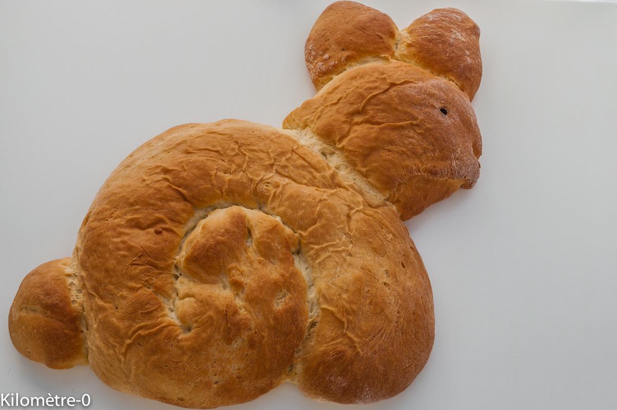 Photo de recette acile, rapide, légère, bio  de brioche lapin Kilomètre-0, blog de cuisine réalisée à partir de produits locaux et issus de circuits courts