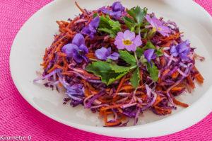 Photo de recette légère, facile, rapide, bio,  de salade radis noir, carotte et chou rouge de  Kilomètre-0, blog de cuisine réalisée à partir de produits locaux et issus de circuits courts