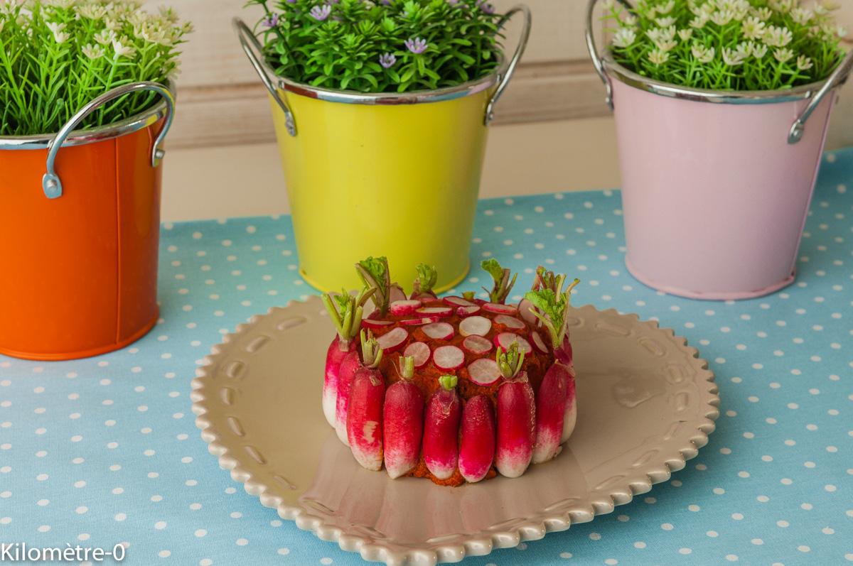 Photo de recette d'apéro facile, rapide, joli, printemps,  chèvre à la tomatine et aux radis de Kilomètre-0, blog de cuisine réalisée à partir de produits locaux et issus de circuits courts