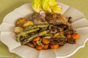 Photo de recette  facile, rapide, légère, printemps d'oie aux légumes printaniers de Kilomètre-0, blog de cuisine réalisée à partir de produits locaux et issus de circuits courts