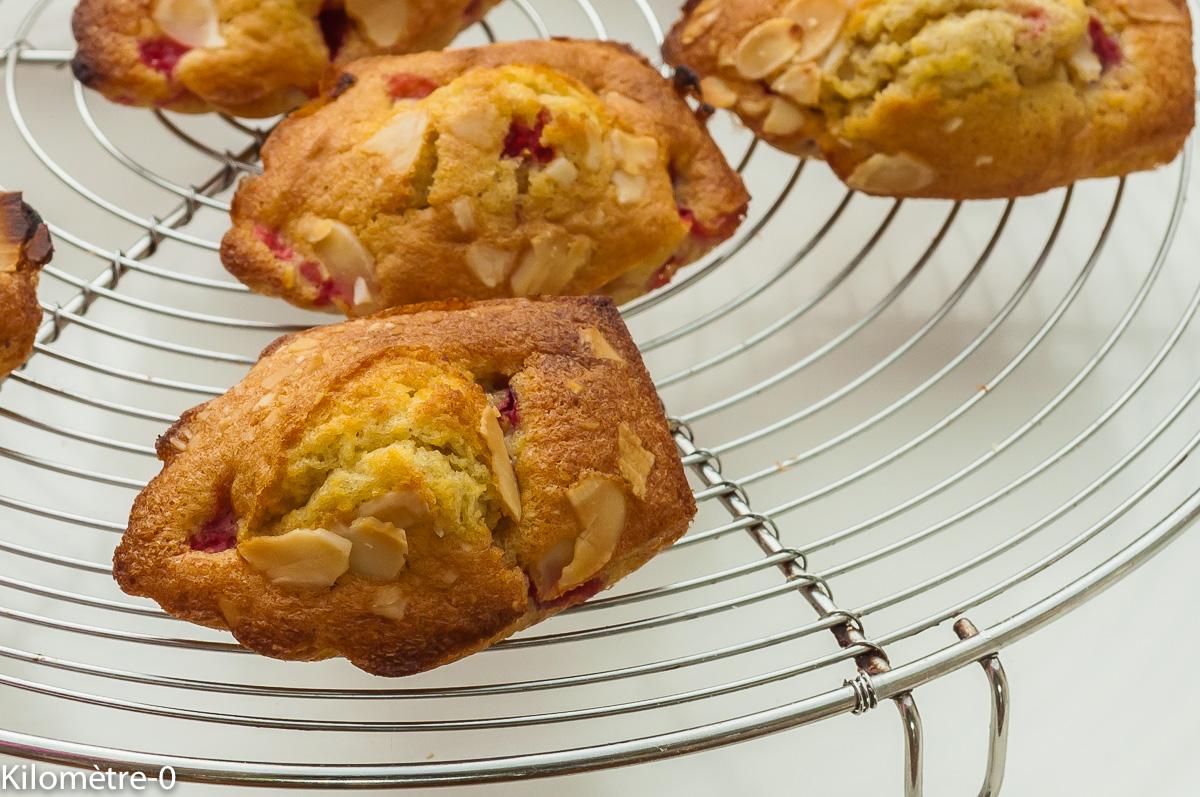 Photo de recette facile, rapide, légère de madeleines fraises amandes de Kilomètre-0, blog de cuisine réalisée à partir de produits locaux et issus de circuits courts