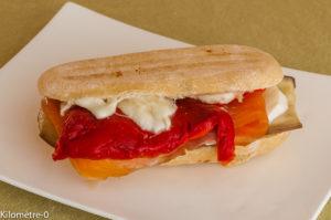 Photo de recette de panini aubergine, poivrons, saumon fumé, mozzarella facile rapide léger deKilomètre-0, blog de cuisine réalisée à partir de produits locaux et issus de circuits courts