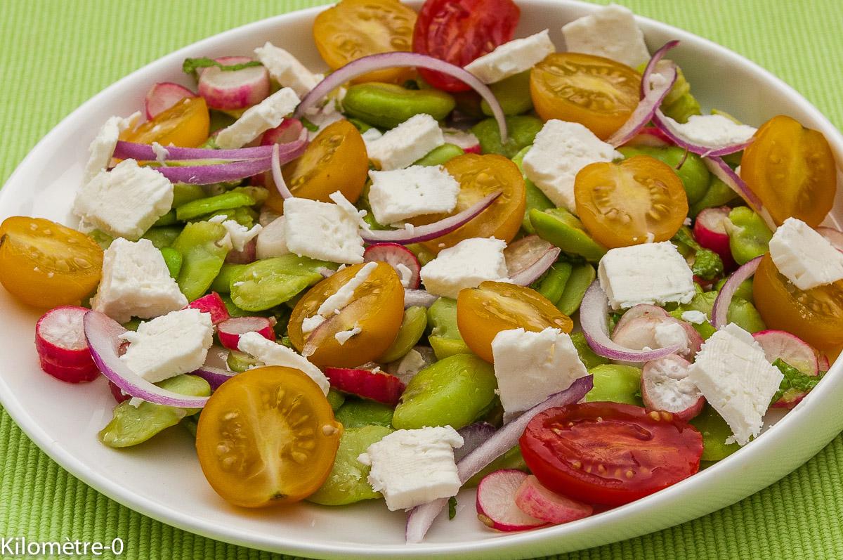 Photo de recette de salade fèves, radis, menthe, fêta facile rapide légère de  Kilomètre-0, blog de cuisine réalisée à partir de produits locaux et issus de circuits courts