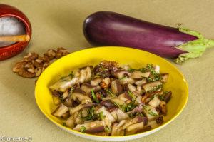 Photo de recette de salade, aubergine, raisins, noix, facile rapide, léger, bio de  Kilomètre-0, blog de cuisine réalisée à partir de produits locaux et issus de circuits courts