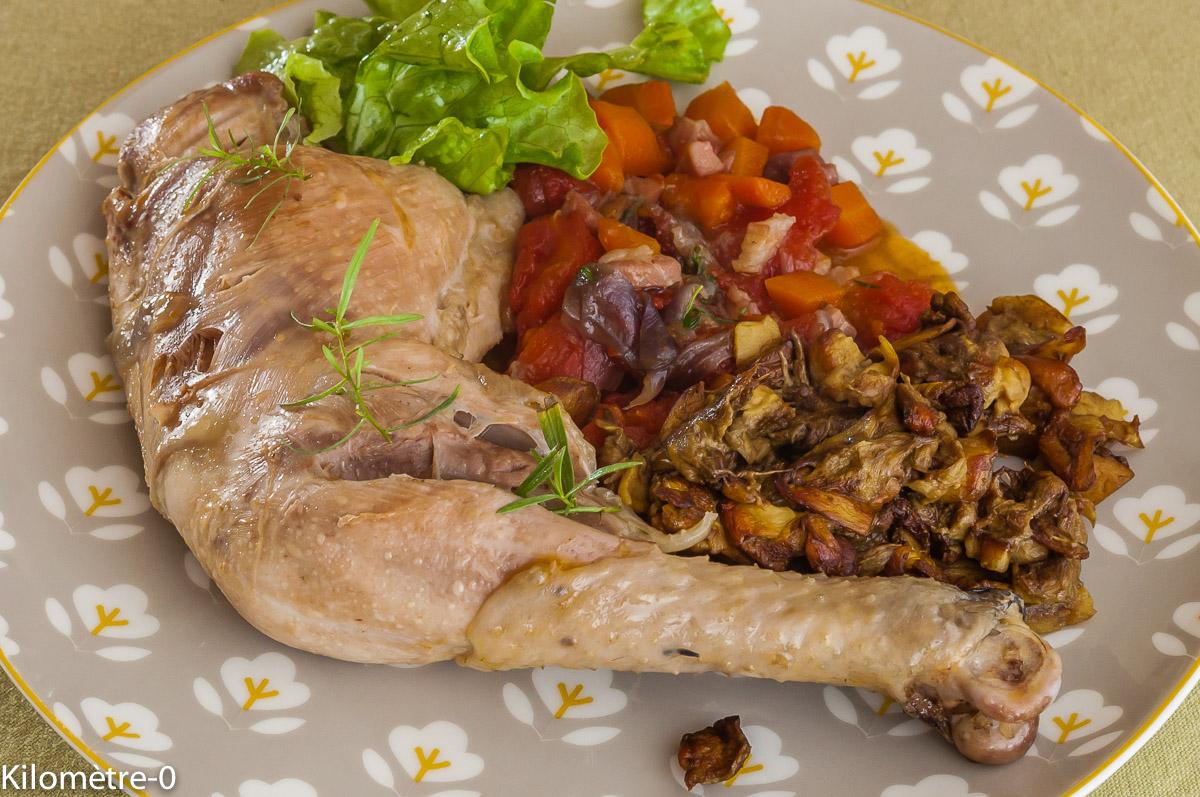 Photo de recette de estouffade de poulet, cèpes, carottes, tomates, facile, rapide, léger, bio deKilomètre-0, blog de cuisine réalisée à partir de produits locaux et issus de circuits courts