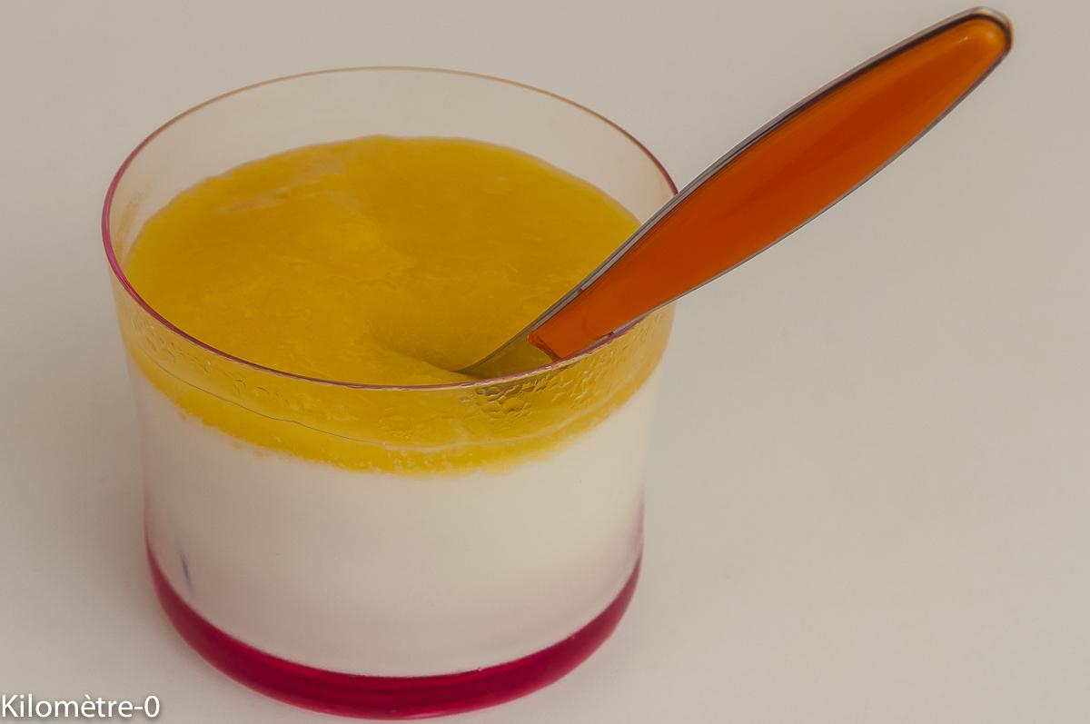 Photo de recette de panna cotta, mangue, coulis, facile, léger, rapide, simple, crème, sirop d'orgeat de Kilomètre-0, blog de cuisine réalisée à partir de produits locaux et issus de circuits courts