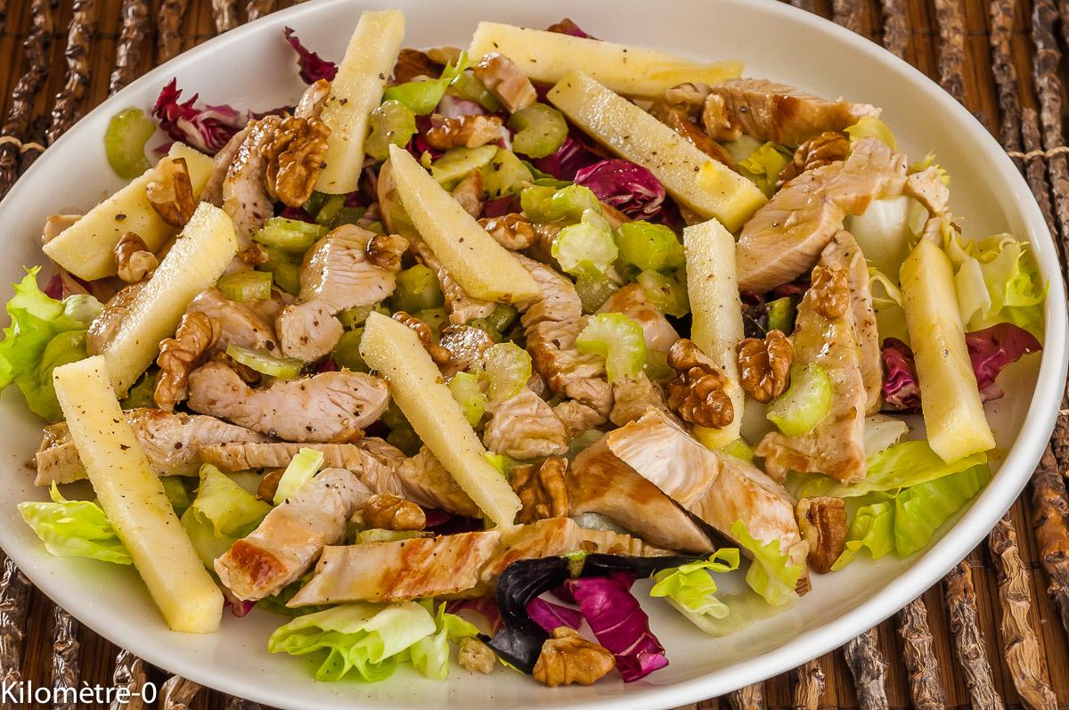 Photo de recette de salade, fraicheur, pommes, dinde, céléri, facile, rapide, léger, bio, salade composée, Kilomètre-0, blog de cuisine réalisée à partir de produits locaux et issus de circuits courts