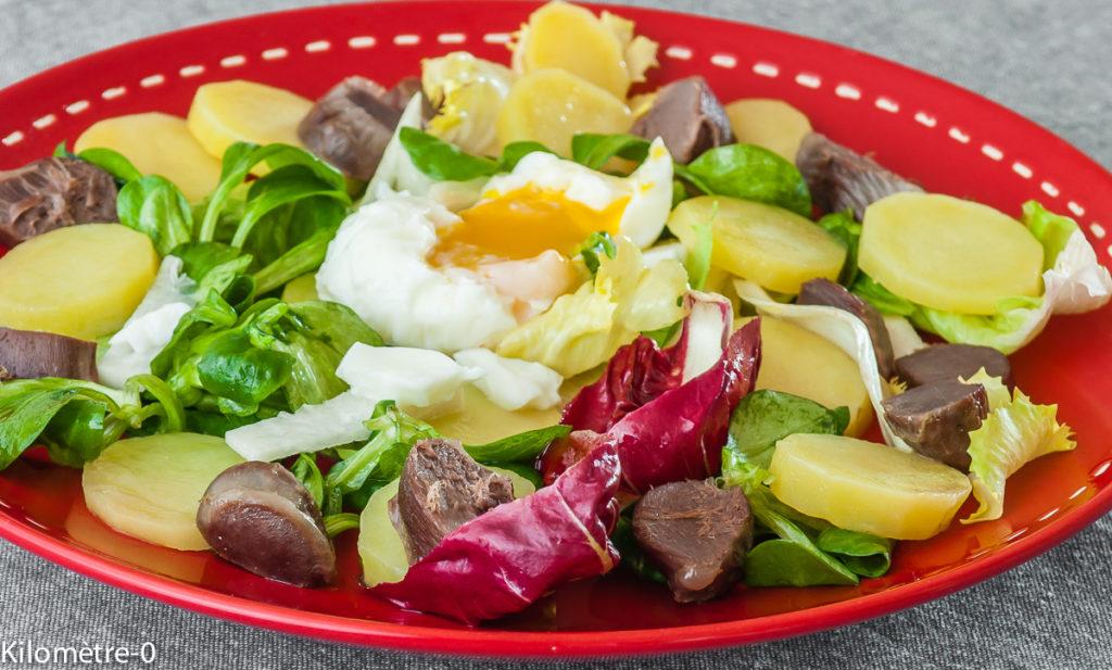 Photo de recette de salade, gésier, volaille, pomme de terre, oeuf mollet, oeuf poché, rapide, facile, léger, bio de Kilomètre-0, blog de cuisine réalisée à partir de produits locaux et issus de circuits courts