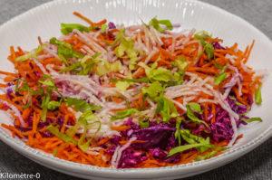 Photo de recette de salade chou rouge, carotte, radis noir, facile, rapide, léger, bio de Kilomètre-0, blog de cuisine réalisée à partir de produits locaux et issus de circuits courts