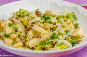 Photo de recette de salade, céleri, noix, comté, pomme, facile, bio, rapide, léger de Kilomètre-0, blog de cuisine réalisée à partir de produits locaux et issus de circuits courts