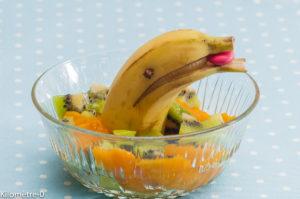 Photo de recette de salade de fruits, dauphin, banane, bio, léger, rapide de  Kilomètre-0, blog de cuisine réalisée à partir de produits locaux et issus de circuits courts