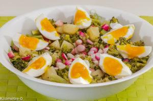 Photo de recette de salade, pomme de terre, radis, brocolis, facile, bio, rapide, léger  Kilomètre-0, blog de cuisine réalisée à partir de produits locaux et issus de circuits courts