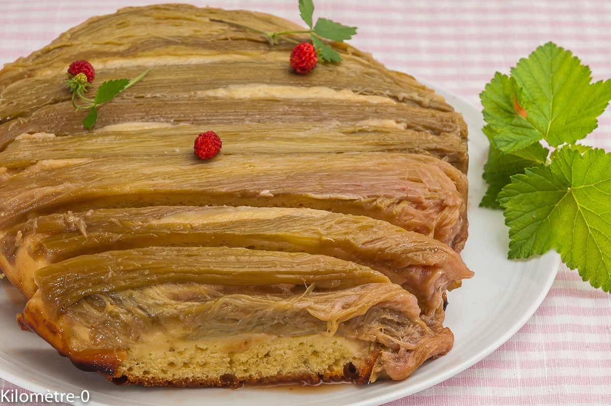 Photo de recette de gâteau, moelleux, rhubarbe, facile, rapide, léger Kilomètre-0, blog de cuisine réalisée à partir de produits locaux et issus de circuits courts