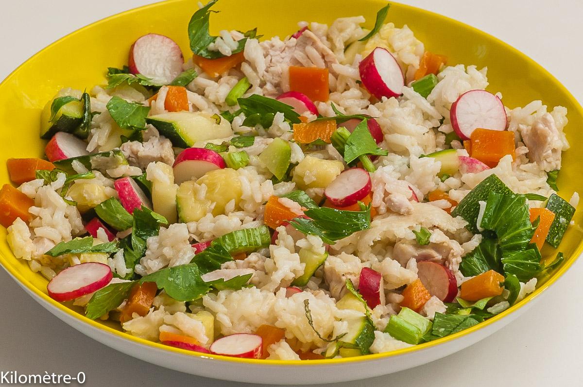 Photo de recette de salade, riz, légumes, radis, céleri, carotte, courgettes, facile, économique, de Kilomètre-0, blog de cuisine réalisée à partir de produits locaux et issus de circuits courts