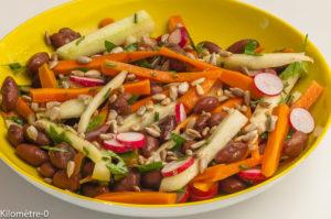 Photo de recette de salade composée, complète, haricots borlotti, carotte, concombre, graines, Kilomètre-0, blog de cuisine réalisée à partir de produits locaux et issus de circuits courts