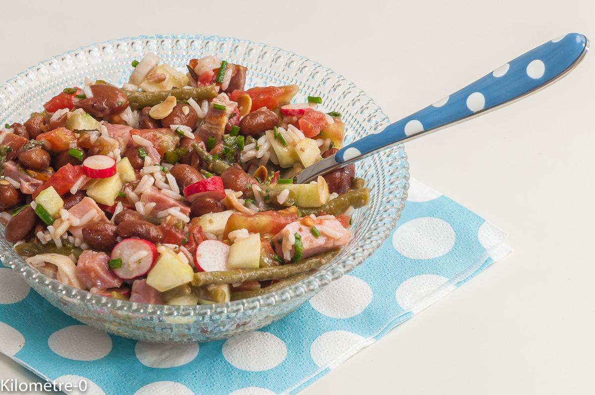 Photo de recette de salade, haricots, borlotti, radis, tomate, riz, facile, concombre de Kilomètre-0, blog de cuisine réalisée à partir de produits locaux et issus de circuits courts