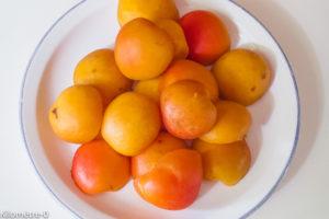Photo de recette d'abricot, facile, flan de Kilomètre-0, blog de cuisine réalisée à partir de produits locaux et issus de circuits courts