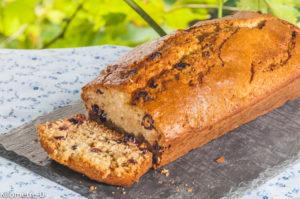 Photo de recette de  gâteau du matin, cranberries, noix de coco de Kilomètre-0, blog de cuisine réalisée à partir de produits locaux et issus de circuits courts