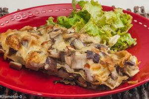 Photo de recette de lasagnes, aubergines, cèpes, fromage, de  Kilomètre-0, blog de cuisine réalisée à partir de produits locaux et issus de circuits courts