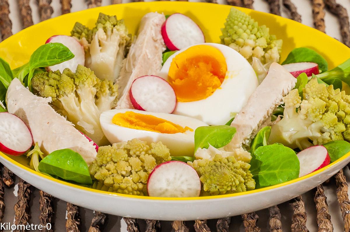 Photo de recette de salade, chou romanesco, oeuf, poulet, radis, bio de Kilomètre-0, blog de cuisine réalisée à partir de produits locaux et issus de circuits courts