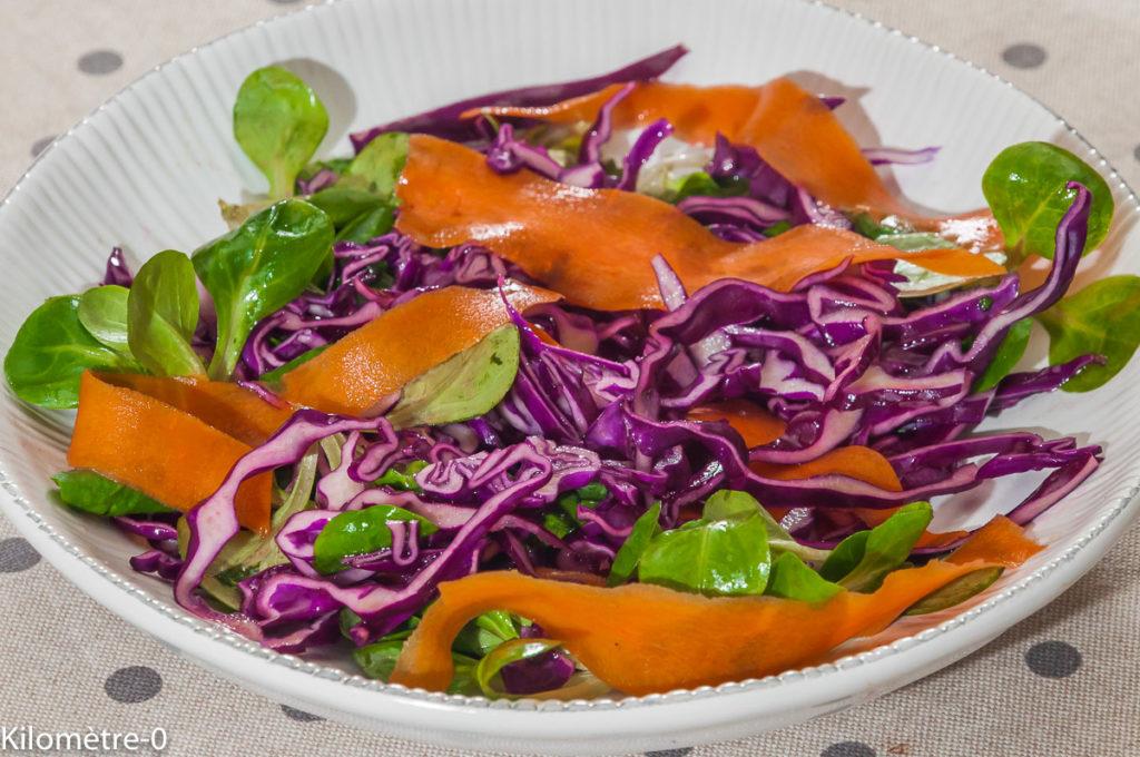 Photo de recette de salade de chou rouge, carottes, mâche, facile, légère, rapide de Kilomètre-0, blog de cuisine réalisée à partir de produits locaux et issus de circuits courts