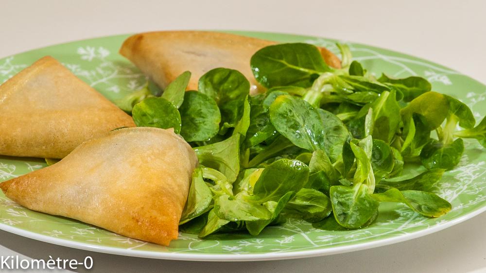Photo de recette de brik, canard, chèvre frais, pruneaux, facile rapide de Kilomètre-0, blog de cuisine réalisée à partir de produits locaux et issus de circuits courts