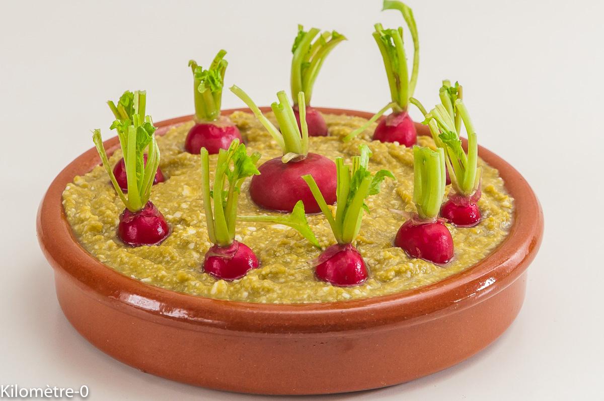 Photo de recette de champ de radis, asperges vertes, apéro facile, légumes, léger, rapide de Kilomètre-0, blog de cuisine réalisée à partir de produits locaux et issus de circuits courts