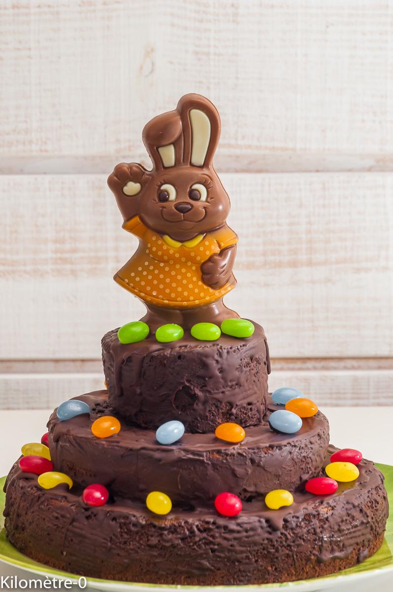 Photo de recette de dessert, gâteau, Pâques, enfant, original, chocolat, fondant, facile, Kilomètre-0, blog de cuisine réalisée à partir de produits locaux et issus de circuits courts