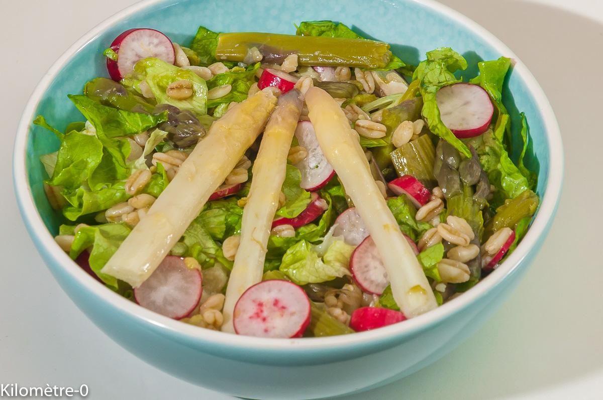 Photo de recette de salade blé, asperges blanches, asperges vertes, radis, facile, rapide de Kilomètre-0, blog de cuisine réalisée à partir de produits locaux et issus de circuits courts