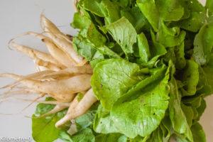 Photo de recette de radis, variété ancienne, bio de Kilomètre-0, blog de cuisine réalisée à partir de produits locaux et issus de circuits courts