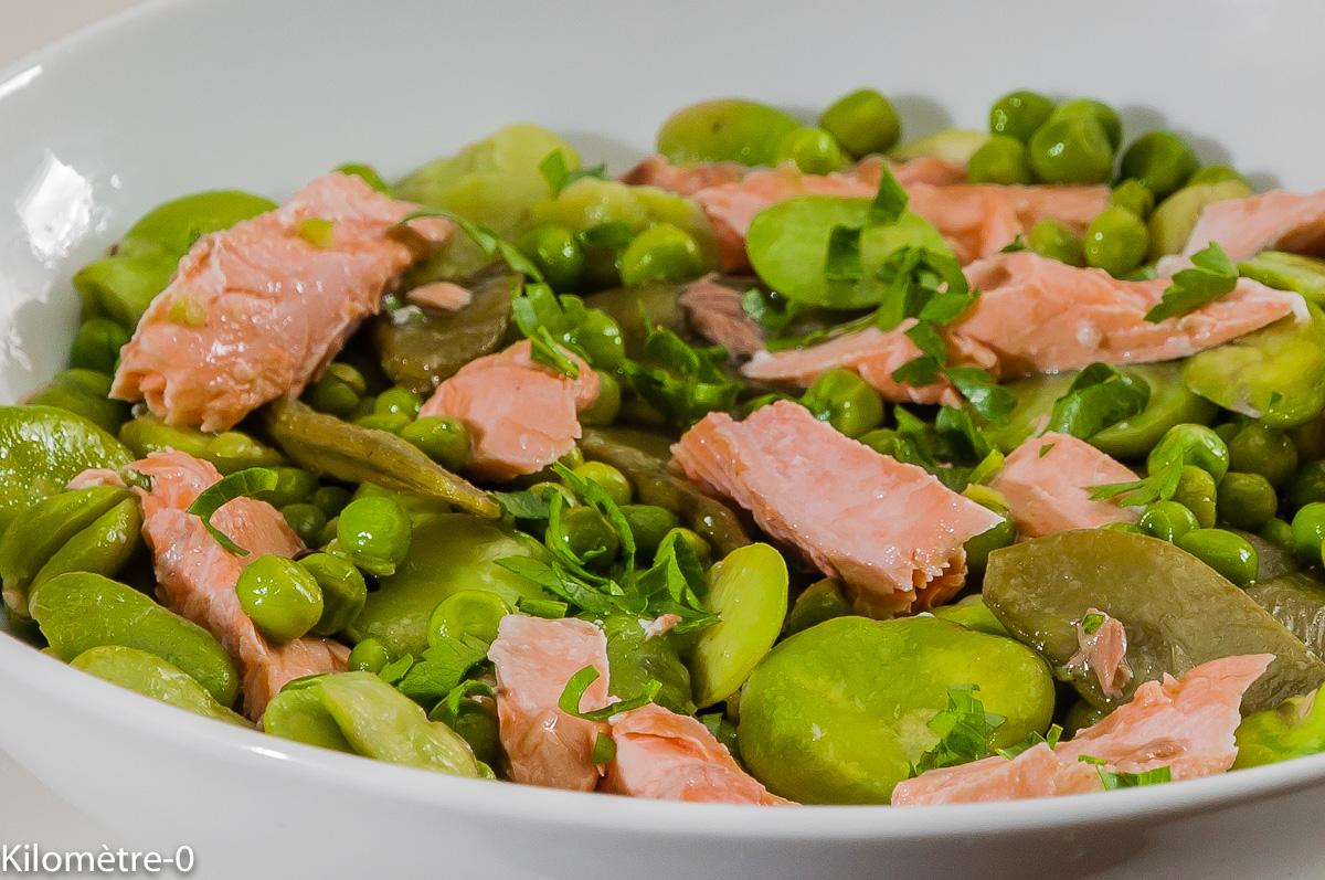 Photo de recette de salade de saumon, fèves, petits pois, pois gourmands, facile, rapide, légère de Kilomètre-0, blog de cuisine réalisée à partir de produits locaux et issus de circuits courts
