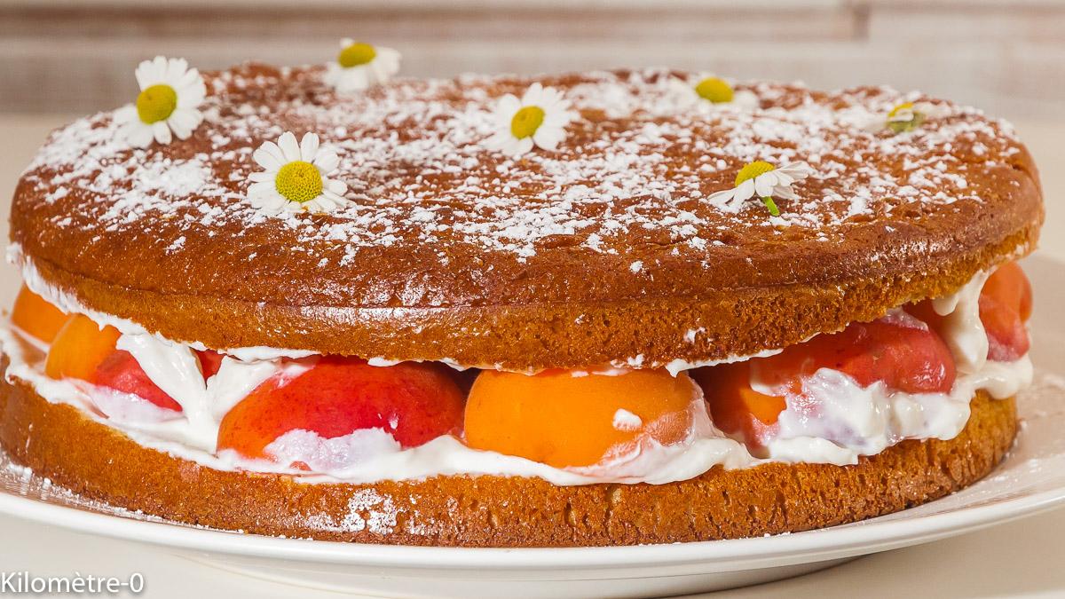 Photo de recette de gâteau à la ricotta, abricots, , facile, maison de Kilomètre-0, blog de cuisine réalisée à partir de produits locaux et issus de circuits courts