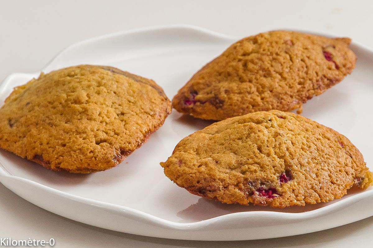 Photo de recette de madeleines aux framboises facile de Kilomètre-0, blog de cuisine réalisée à partir de produits locaux et issus de circuits courts