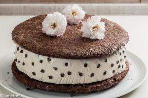 Photo de recette de glace italienne, gâteau, biscuit, chocolat, dessert, été de Kilomètre-0, blog de cuisine réalisée à partir de produits locaux et issus de circuits courts