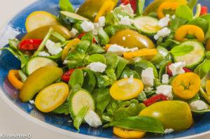 Photo de recette de  salade, pourpier, tomates, poivrons, courgettes, bio, fêta, végétarienne, facile, rapide, léger, été, estivale,  de Kilomètre-0, blog de cuisine réalisée à partir de produits locaux et issus de circuits courts