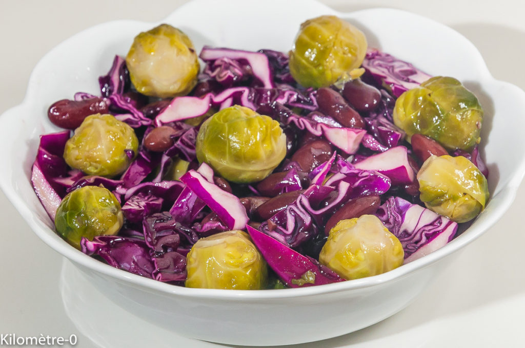 Photo de recette végétarienne, salade, chou rouge, choux de Bruxelles, haricots rouge, healthy, facile, raoKilomètre-0, blog de cuisine réalisée à partir de produits locaux et issus de circuits courts