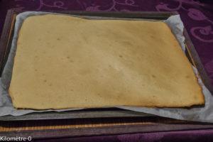 Photo de recette de  biscuit roulé, biscuit à bûche, inratable, facile, rapide, léger, bio de Kilomètre-0, blog de cuisine réalisée à partir de produits locaux et issus de circuits courts