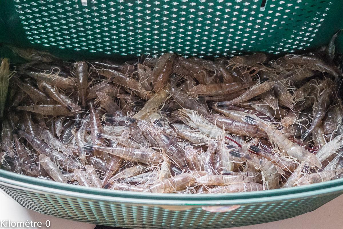 Photo de recette, comment cuire des crevettes grises, cuisson des crevettes, facile  de Kilomètre-0, blog de cuisine réalisée à partir de produits locaux et issus de circuits courts
