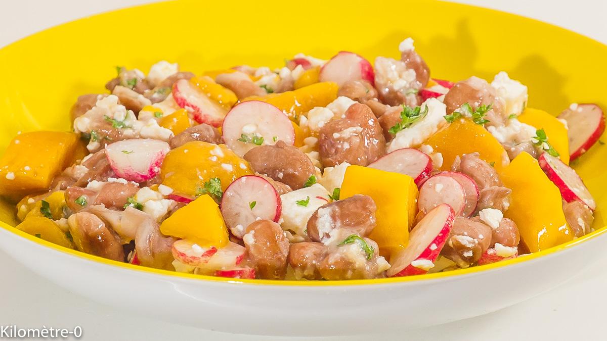 Photo de recette de salade végétarienne, haricots borlotti radis, mangue, fêta, facile, healthy, rapide de Kilomètre-0, blog de cuisine réalisée à partir de produits de saison et issus de circuits courts