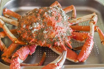 Photo de recette d'araignée, four vapeur, crustacés, cuisson maison,  Kilomètre-0, blog de cuisine réalisée à partir de produits de saison et issus de circuits courts