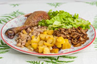 Photo de recette de poulet du dimanche, facile, cèpes, champignons, pommes de terre, châtaignes, automnal, de Kilomètre-0, blog de cuisine réalisée à partir de produits de saison et issus de circuits courts