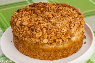 Photo de recette  américaine, cuisine du monde, cake, dessert, gâteau, cacahuètes, Etats Unis, facile, bio, facile, rapide, léger de Kilomètre-0, blog de cuisine réalisée à partir de produits de saison et issus de circuits courts